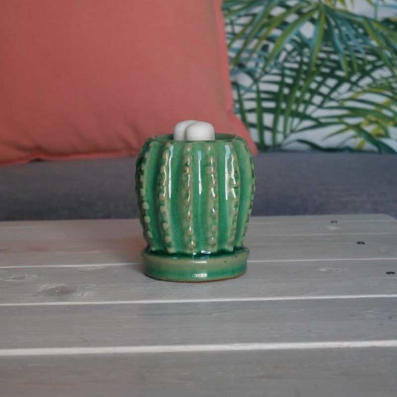 brûleur-huile-essentielle-cactus-vert